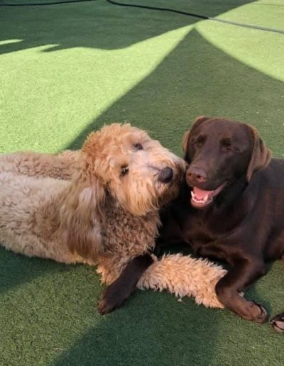 Max and Eva