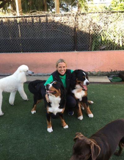 diane and 2 big doggies